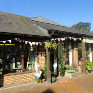 Sale of Fine Floristry in Hailsham, East Sussex