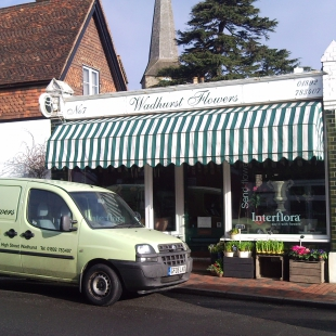 Wadhurst Flowers Sold by GPS-Direct